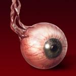 transfero90 szem